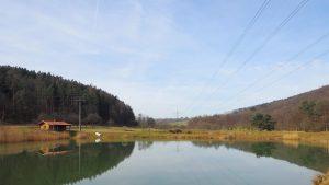 Angeln am See @ Vereinsgewässer